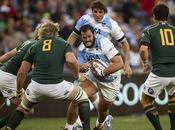 Pumas Sudáfrica Vivo, Rugby Championship 2014