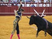 CUESTIÓN IDENTIDAD (Crónica abono Feria MÁLAGA)