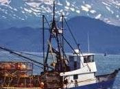 Tráfico marítimo, contaminación ignora.