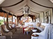 Luxury safari holiday