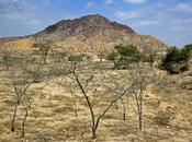 Túcume: pirámides truncas