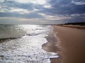 Martes Parlanchín #11: Playa Monte Gordo