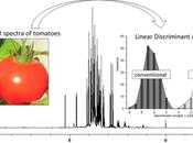 ¿Cómo saber alimento orgánico?