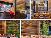 Musakaya primer restaurante japonés Toledo