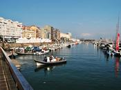 Mundial Vela Santander 2014