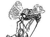 ¿Por pican tanto mosquitos?