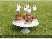 Cupcakes Vainilla Chocolate Suave