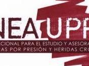 ¿Conoces Grupo Nacional para Estudio Asesoramiento Ulceras Presión Heridas Crónicas (GNEAUPP)?