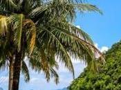 Nido, paraíso Palawan