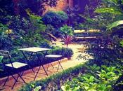 Siente romanticismo centro Madrid