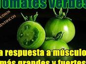 Tomates verdes: respuesta músculos grandes fuertes