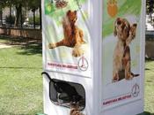 Máquinas reciclaje alimentan perros gatos abandonados