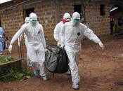 Ébola: información, información