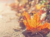 Otoño, caen hojas