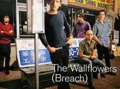 Wallflowers Sleepwalker (2000)