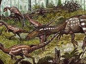 Tachiraptor admirabilis: nueva especie dinosaurio Venezuela