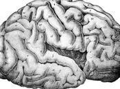 siente cuando desarrollas esquizofrenia aguda