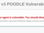 Poodle: otra grave vulnerabilidad descubierto