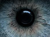 Tratamiento células madre embrionarias humanas permite regenerar visión