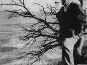 hombre plantaba árboles, José Saramago