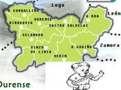 Fútbol Sala Base Ourense: Calendarios, incluidos prebenjamines