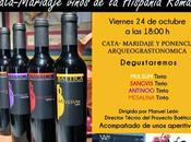 VINOS MARIDAJE: Cata-maridaje cuatro vinos Hispania romana ponencia arqueogastronómica