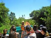 Sobre favoritismos: Parque Nacional Iguazú