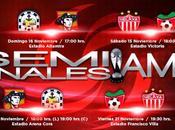 Fechas horarios semifinal Liga ascenso 2014