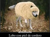 Hombres: Falsos profetas… ¡Igualito lobos piel cordero!