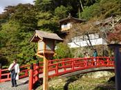 Lugares Japón Parque Mino templo Katsuoji