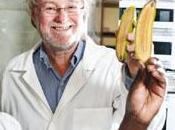 Bananas transgénicas SciFest Cuenca…