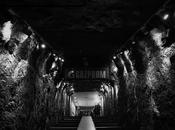 túnel gelsenkirchen