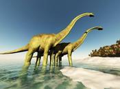 ¿Por existen mamíferos terrestres tamaño Dinosaurios?