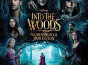 "Nuevo póster para españa francia ""into woods"""