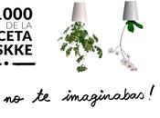 1000 usos maceta Boskke