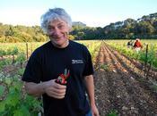 Wine People:Wine Fun:Drink Enjoy