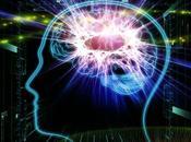 peligrosos mitos sobre nuestro cerebro