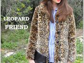 Leopard friend