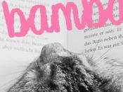 Entre Bambalinas (20): Revoloteando entre páginas de...