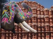 Jaipur, Ciudad Rosa Rajasthán