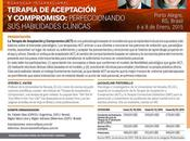 (Porto Alegre enero 2015) Taller Terapia Aceptación Compromiso: perfeccionando habilidades clínicas