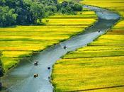 Baolau, buscador vuelos, trenes buses Vietnam