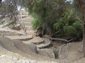 Nazca: Cahuachi alrededores