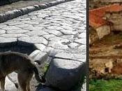 Pompeya borde ruina