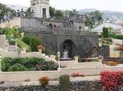 Recorriendo isla Tenerife: Orotava