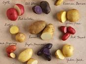 Verduras bulbo tubérculos