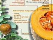 Propiedades Calabaza #Infografía #Salud #Alimentación