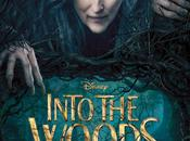 Into woods (u.s.a., 2014)