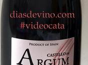 Castillo Argum Cencibel 2013