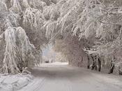 ¿Hay probabilidades contraer resfriado invierno?